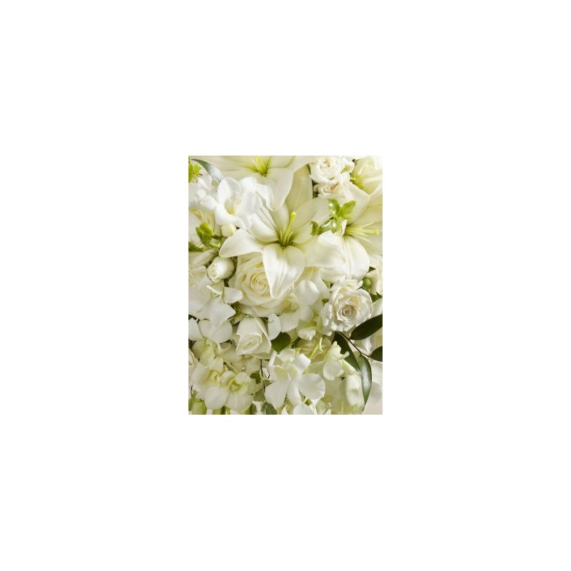 Aberdeen Wedding Flowers Chicago : White wonders bouquet aberdeen flowers