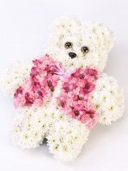 Teddy Bear Tribute - Pink