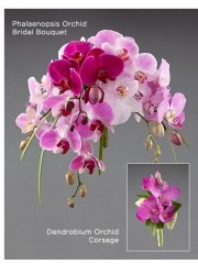 Phalaenopsis Orchid Bridal Bouquet