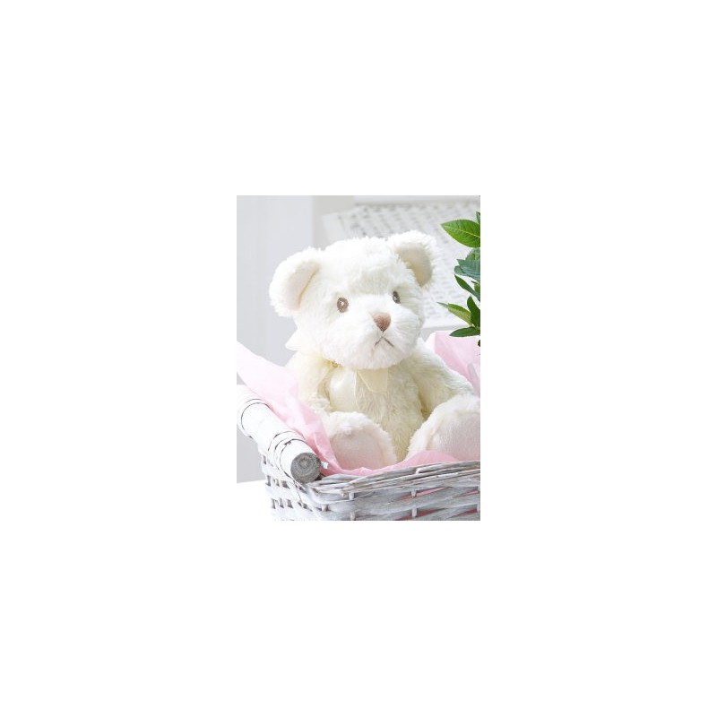 Baby Gifts Next Day Delivery Uk : Celebratory baby girl gift basket aberdeen flowers
